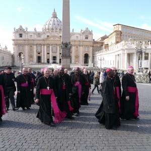 biskupi - Sv. Petar